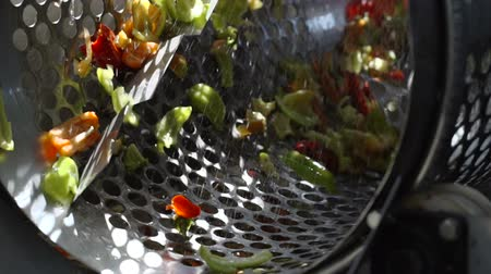 konserve : Cannery. Preserving of Vegetables and Legumes. Machine for Cutting Pepper Stok Video