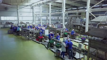 konzervipar : BELORECHENSK, RUSSIA - SEPTEMBER 04, 2018: Processing of vegetables in a cannery. Production conveyor with workers. SEPTEMBER 04, 2018