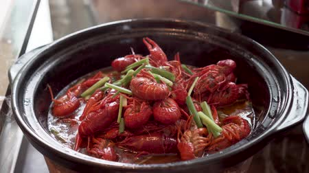 shellfish dishes : Hot Crayfish Dish With Green Onion Stock Footage