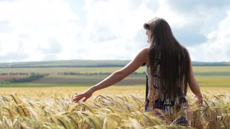 pszenica : young woman standing in wheat field Wideo