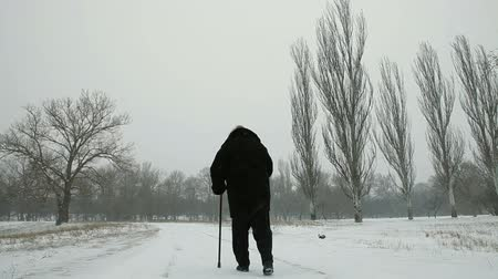 bengala : Lonely Senior Woman Walking Away in Blizzard, Rear View