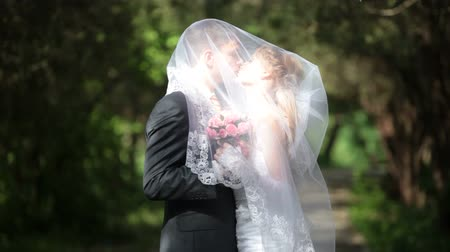 weddings : groom kissing bride under veil on  park alley Stock Footage