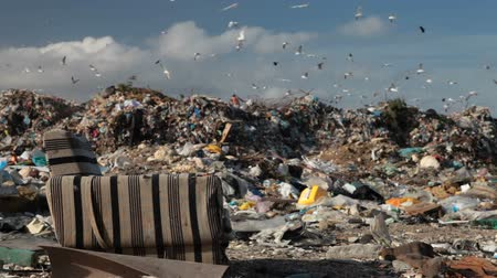 deprived : old chair at the landfill Stock Footage