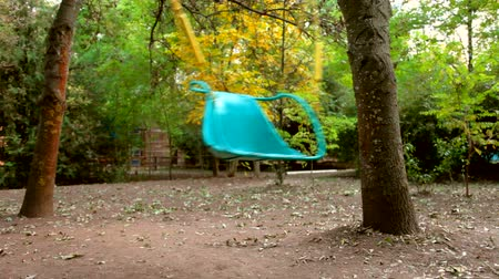 diferansiyel odak : Empty swing in the autumn park