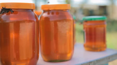 diferansiyel odak : worker bees on the jar with honey