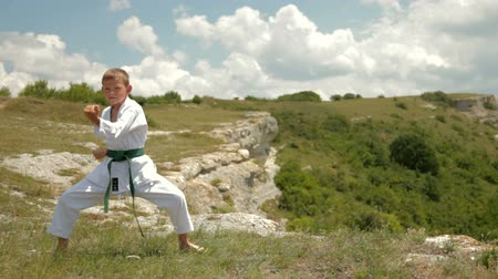 sport dzieci : boy practicing karate on the nature