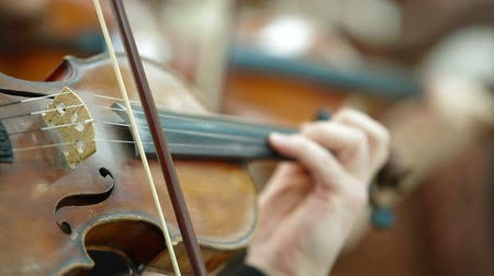 cselló : Playing Violin And Cello At Concert Or Reception