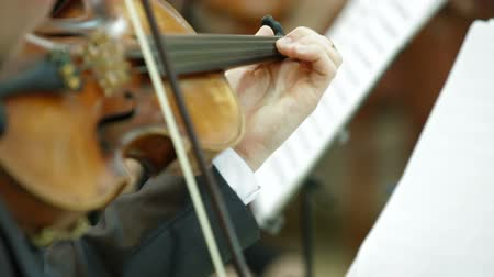 годовщина : Playing Violin And Cello At Concert Or Reception