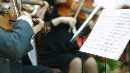 симфония : Playing Violin And Cello At Concert Or Reception