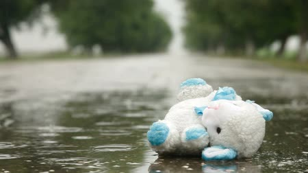 rainy : Lost Toy In A Puddle Under Rain, Surface Level