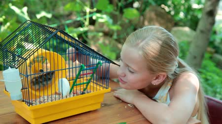 fare : Little Girl Watching a Pet Hamster in a Cage