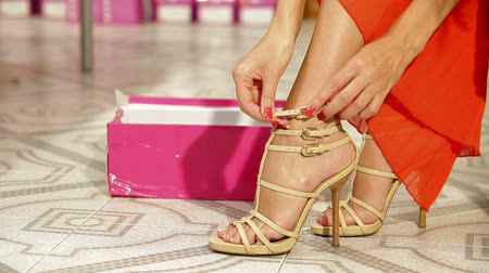 sapato : Woman Shopping in Shoe Store