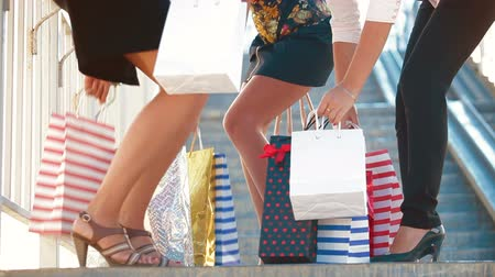 giydirmek : Female legs with shopping bags