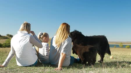 rescue dog : People enjoying in the nature with their Newfoundland dogs, rear view
