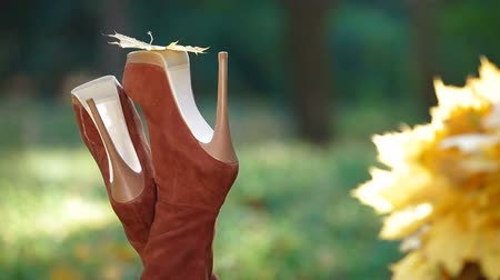 ботинок : Autumn Leaf On High Heel Стоковые видеозаписи