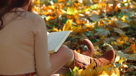 enciclopédia : Student Reading Lecture Notes in Autumn Park