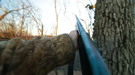 tiroteio : Gun Shot Stock Footage