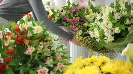 kwiaciarnia : Florist Working In Flower Shop