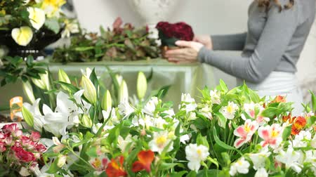 alstroemeria : Florist Arranging Bouquet In Flower Shop Stock Footage