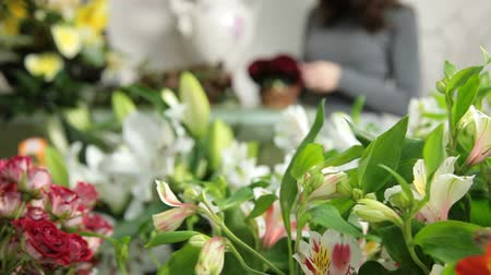 alstroemeria : DOLLY: Florist Arranging Bouquet In Flower Shop
