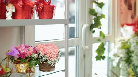 florista : Flower Shop Interior