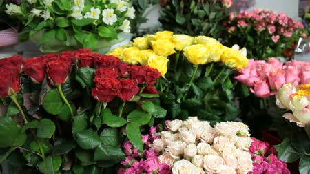DOLLY: Fresh Cut Flowers In Florist Shop