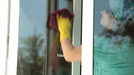 temizleme maddesi : Woman cleaning the window at home Stok Video