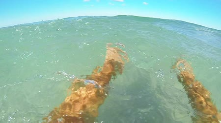 surfovat : SLOW MOTION: Man swimming in the sea POV