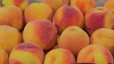 brzoskwinia : DOLLY: Fresh ripe peaches ready for sale