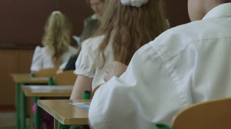 uniforme : Back view of young pupils sitting at the tables in classroom