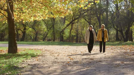 two people talking : Two senior women strolling in the autumn park Stock Footage