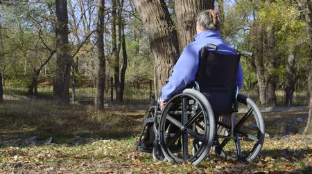 opieka : Elderly disabled woman in a wheelchair
