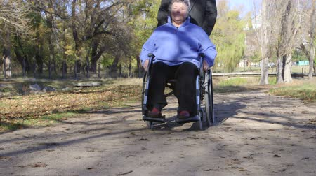 cadeira : Caregiver walking with disabled senior in wheelchair