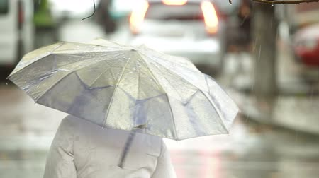 bekleme : Woman with umbrella waiting at bus stop under rain on a city street Stok Video