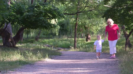 grandchild : Grandmother with her grandson walking along the alley in summer park