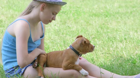 animais e animais de estimação : Child with puppy dog sitting on green lawn in summer day