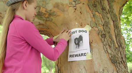 Child posting lost pet sign with dog image on on tree trunk Stock Footage