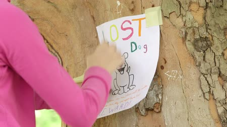 без вести пропавшие : Child posting missing pet poster on tree trunk close-up Стоковые видеозаписи