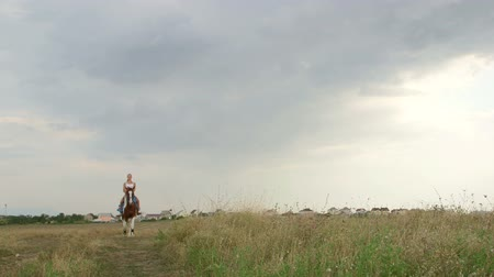 koňmo : Girl rider exercising riding horse in field
