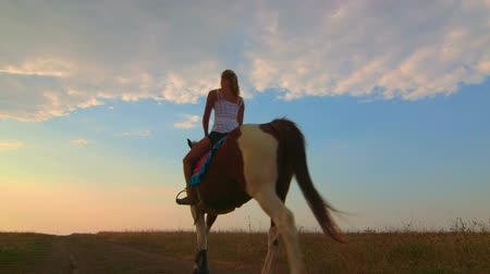 cavalinho : Horseback riding to the horizon at sunset