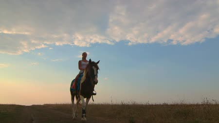 horse riding : Young girl riding horse across the field in evening wide angle Stock Footage