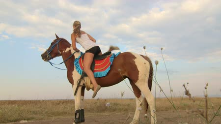 horse riding : Girl rides a horse through the field Stock Footage