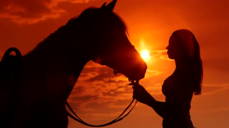 horse riding : Young girl with her horse in rays of setting sun