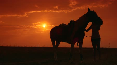 lovas : Silhouette of young woman and horse training during sunset in field  Stock mozgókép