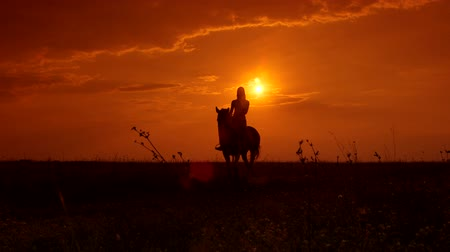 trilha : Silhouette of young girl riding horse at sunset