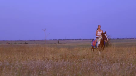 koňmo : Horseback riding through the field in countryside