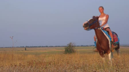 horse riding : Horseback riding through the field in countryside