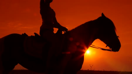 horse riding : Silhouette of young girl riding horse at sunset