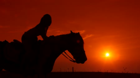 cavalinho : Horseback riding silhouette of girl on horse at sunset