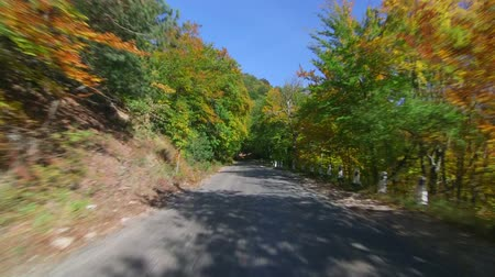 fall through : Driving on twisting mountain road through colorful forest in autumn, Bakhchisarai - Ai-Petri, Crimean mountains Stock Footage
